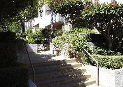 Franklin Terrace