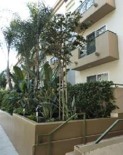 Fuller Condominiums