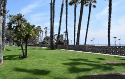 Pacific Strand
