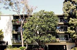 Coral Tree Condominiums