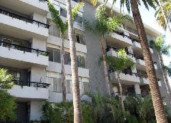 Palm Savoy