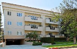 Palm Drive Plaza