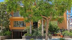 Romaine Terrace