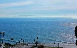 Ocean Woods Terrace