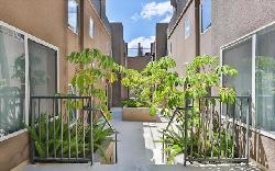 Argento Townhomes