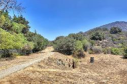 Toluca Hills