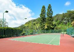 Palisades Tennis Estates