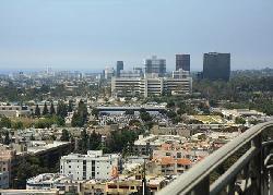 Californian, The