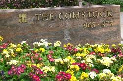 Comstock, The