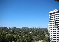 Wilshire Manning, The