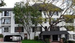Olive Manor
