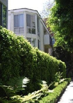 Holloway Terrace